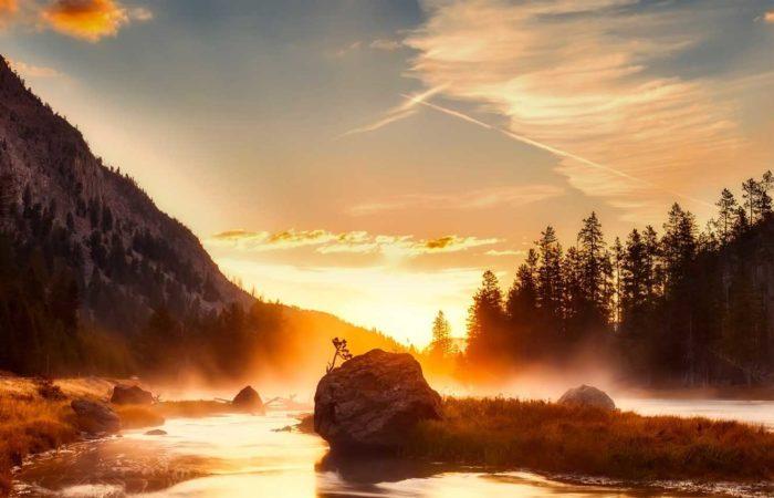 immagine per 8 – Tour Vecchia America e Yellowstone