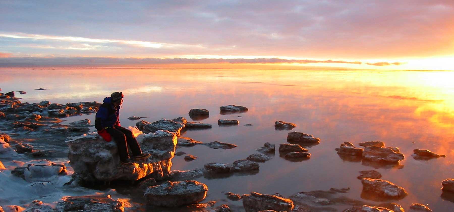 immagine per Tour Alaska