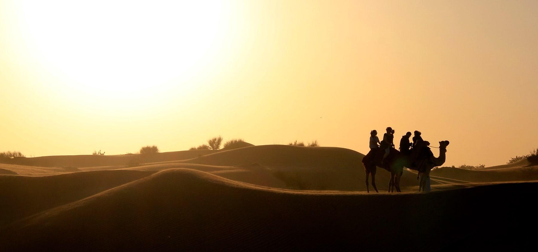 immagine per I Tesori degli Emirati Arabi