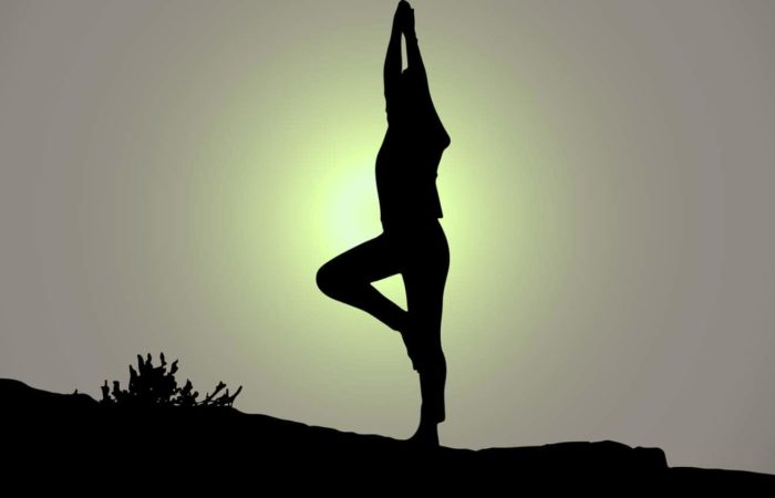 immagine per Yoga Bioenergetica Metodo Tre Feldenkrais
